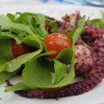 Zfood - blæksprutte