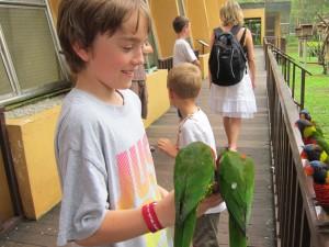 Rasmus med papegoejer