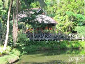 Sipilok Nature Reserve - vores hytte