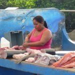 Fisk på disk