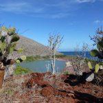 Udsigt til saltvands lagoone