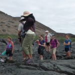 Gruppen i lava walk
